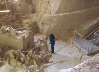 Survey of The Mammoth Site, Hot Springs, SD